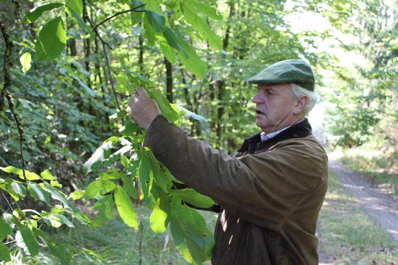 Wilhelm von Trott Elela Europe Nature Deutschland